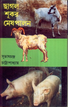 Chhagal Sukar Mesh Palan